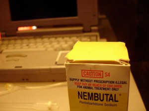 Nembutal and part of Philip Nitschke's euthanasia administration machine. Photographer: Mads Bødker.